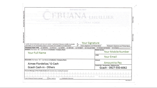 Cebuana Sample Form - GCash In Others